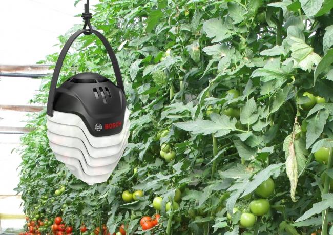 Plantectの温度湿度センサー