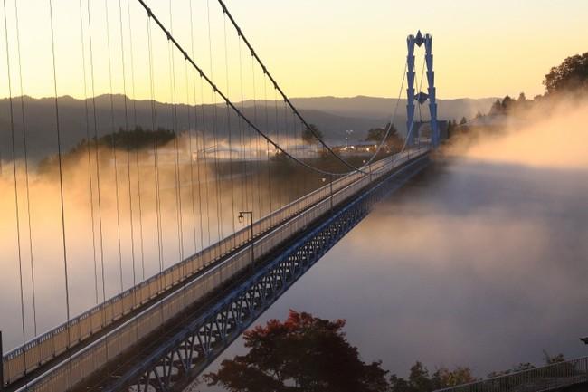 朝霧に映えて