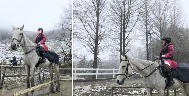 天空の乗馬クラブで新しい趣味を体験