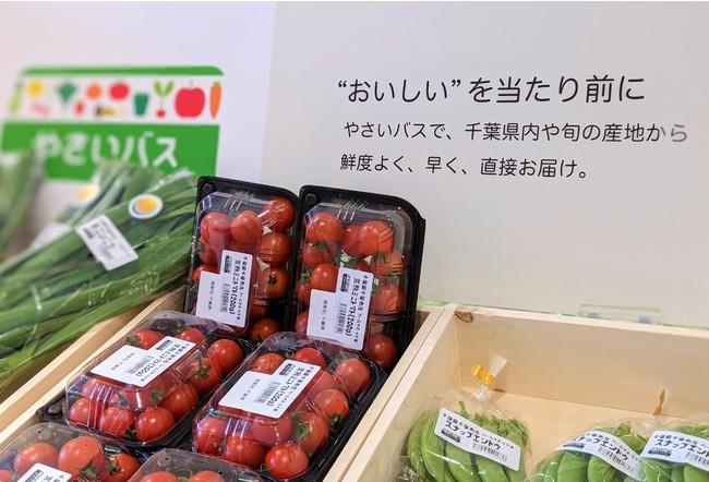 やさいバスで集荷された新鮮な野菜