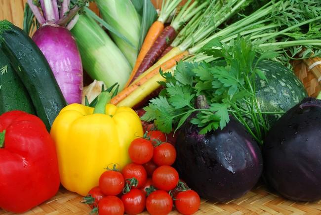 「HAKUBA DELI」信州野菜イメージ
