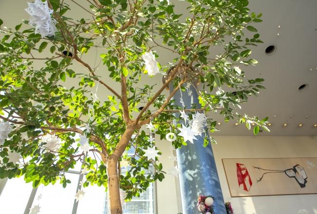 席から見上げたゴムの木
