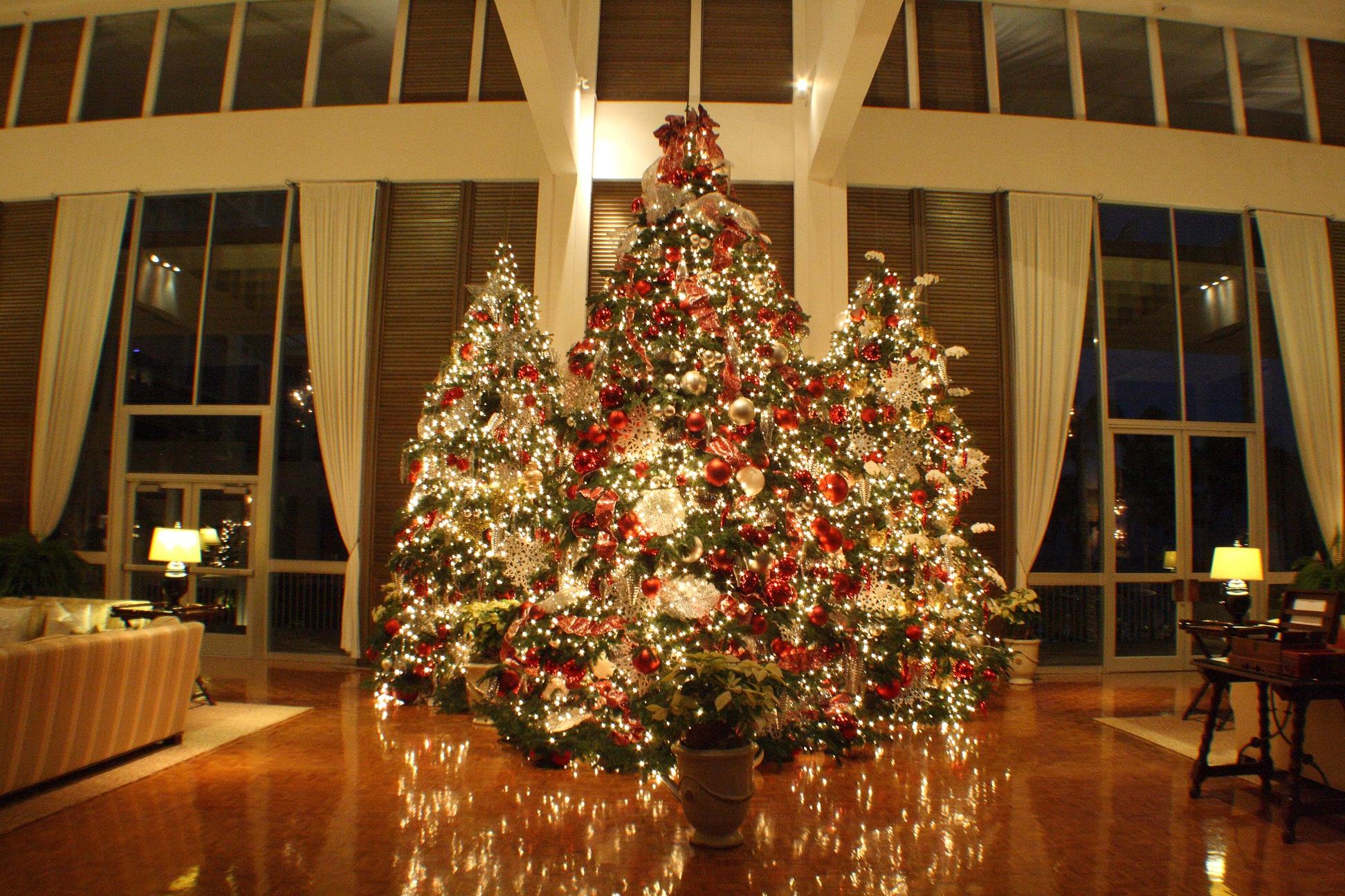 【ザ・カハラ・ホテル&リゾート】ザ・カハラ・ホテル&リゾートで迎えるハワイのクリスマス|オークラ ホテルズ