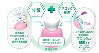 図1 新Wアプローチ 菌のかたまり分散+ブロック殺菌、さらに抗炎症作用で歯周病を防ぐ