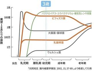 図2 腸内細菌叢の変化