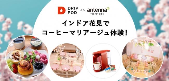 antenna* presents 「インドア花見でコーヒーマリアージュ体験!supported by UCCドリップポッド」