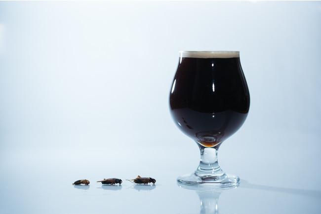 コオロギで作った黒ビール。ご自宅での乾杯にぜひ。