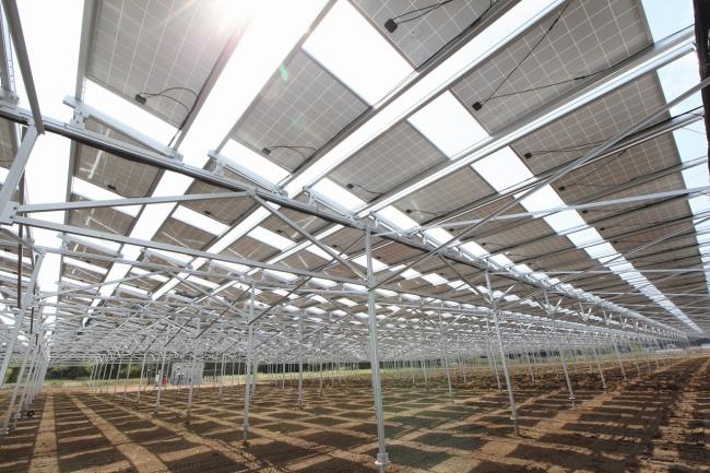 従来型の営農型太陽光発電向け架台