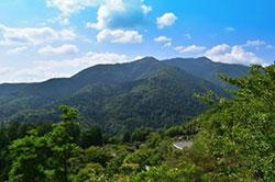 愛宕山展望テラスから見た景色