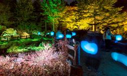Glow with Night Garden Project in Rokko  提灯行列ランドスケープ 2016