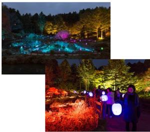 (上・下)高橋匡太 「Glow with Night Garden Project in Rokko  提灯行列ランドスケープ」 2016年