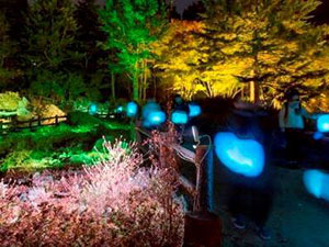 ≪Glow with night Garden Project in Rokko 提灯行列ランドスケープ≫2016年 六甲高山植物園