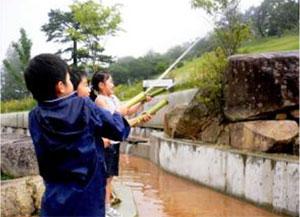 竹の水鉄砲 イメージ