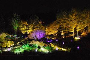 高橋匡太 Glow with Night Garden Project in ROKKO 提灯行列ランドスケープ