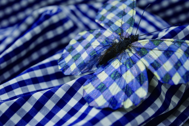大野修平「urban camouflage」 蝶、化粧品、アクリル絵の具、シャツ 2016
