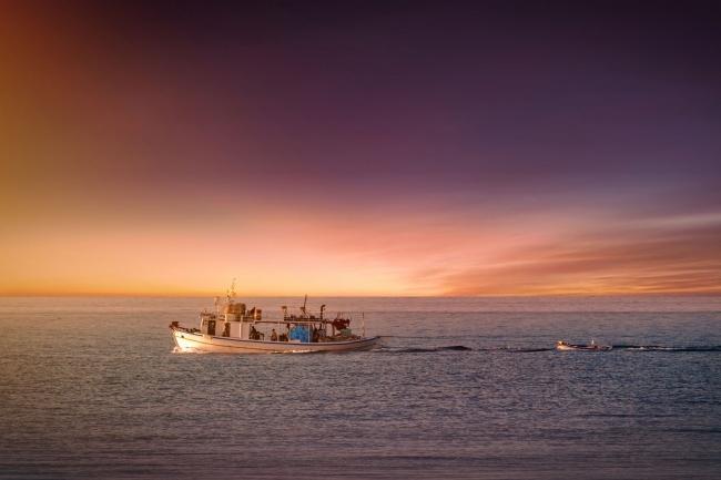 世界の海から集めた 希少な天然海老