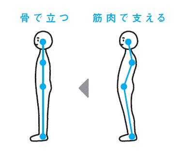 本当の「よい姿勢」は、力を抜いて骨で立つ