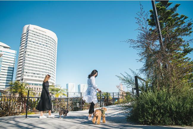 近隣には東京湾岸沿いなどお散歩スポットが充実