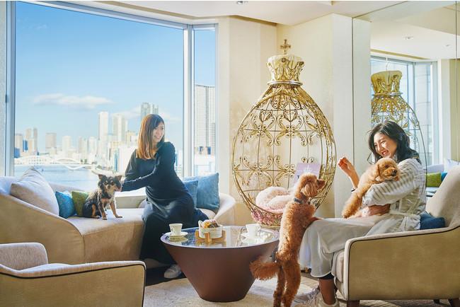 ドッグフレンドリーフロアには専用のラウンジがあり、愛犬とご一緒に寛げるコミュニケーションの場所として利用できる