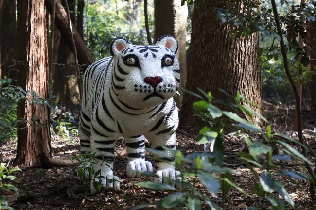 三沢厚彦《Animal 2012-01B》2012/2019 》