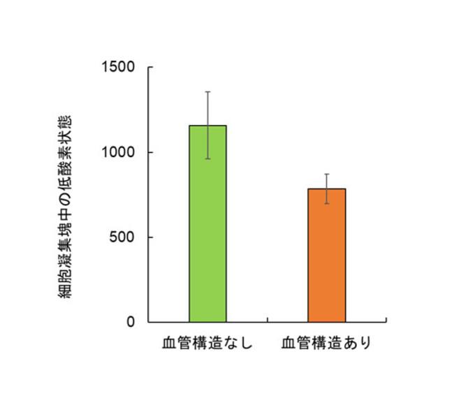 図2:細胞凝集塊中の低酸素状態 (数値がより大きいほうが低酸素状態)