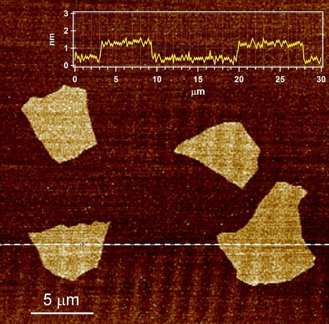 図1:酸化グラフェンの原子間力顕微鏡像
