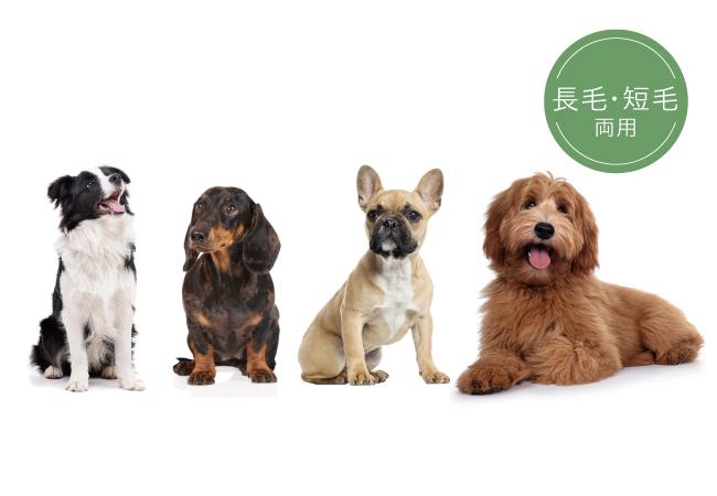 ワンちゃん専用シャンプー「tuna(トゥナ)」短毛や長毛、犬種問わず使用可能