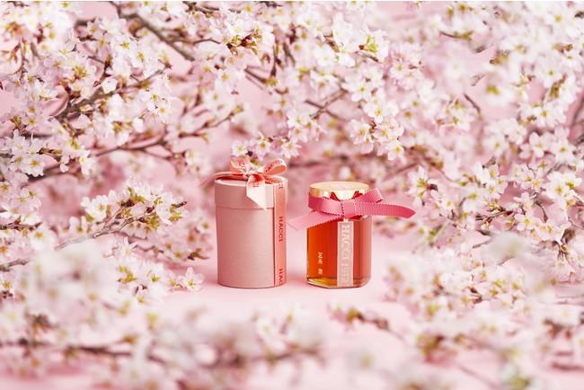 開花 時期 桜