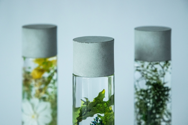モルタルはハンドクラフトにより、野に咲く植物と同様にひとつひとつ異なる表情が楽しめます