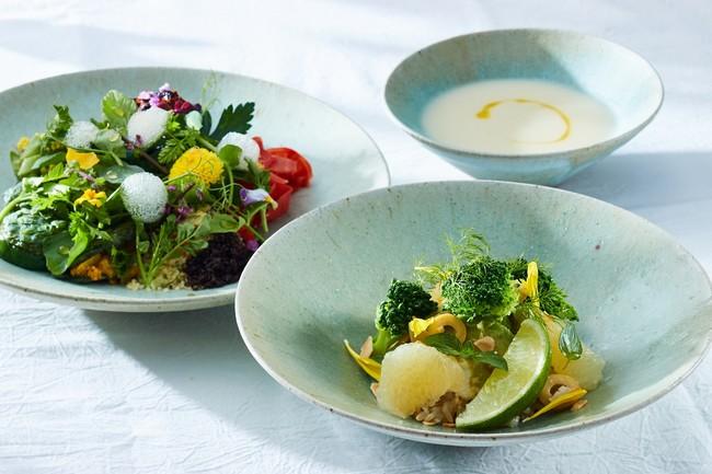 ハーブや季節の野菜を使用した準備食