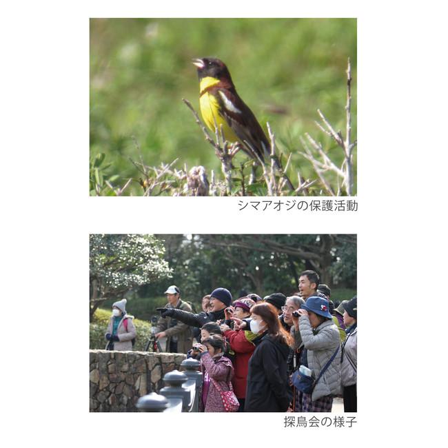 公益財団法人 日本野鳥の会