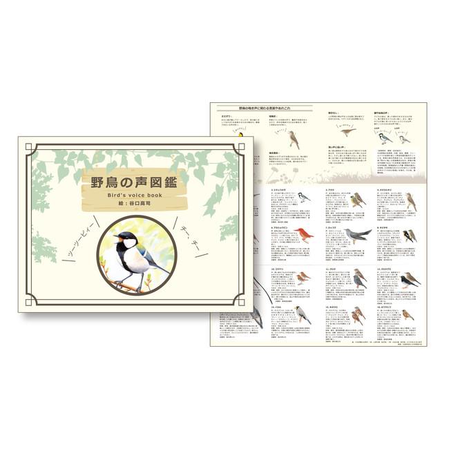 野鳥の声図鑑