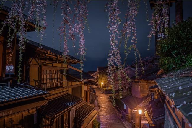 清水寺・産寧坂の夜桜(イメージ)