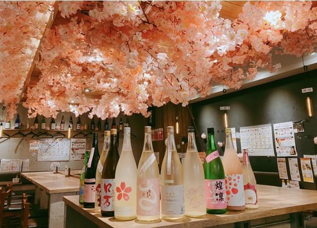お花見日本酒原価酒蔵 新宿総本店
