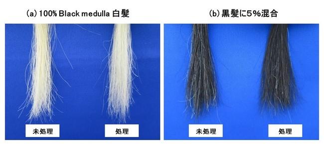 """(図3) """"Hair Medulla care"""" 白髪の外観変化"""