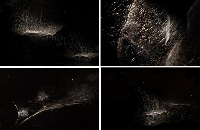 トマス・サラセーノ, Weaving the Cosmos, 2019  (C) Studio Tomas Saraceno, 2019