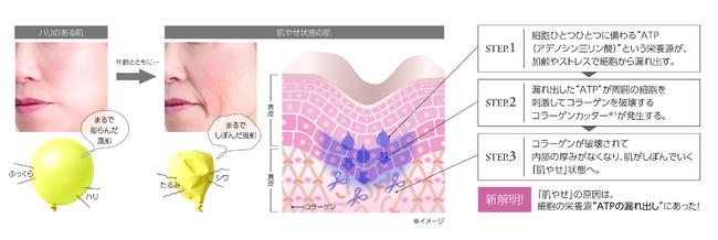 【マキアレイベル】肌やせメカニズム_イメージ
