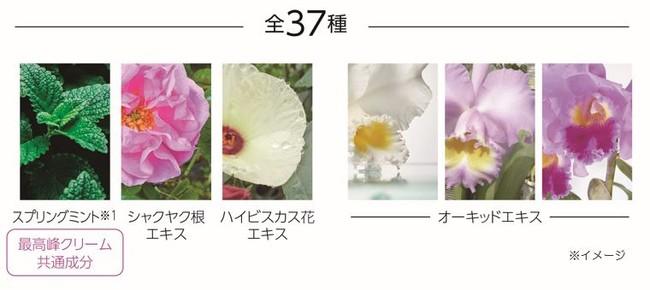 【マキアレイベル】ダイヤモンドビジュパウダー20_美容成分37種