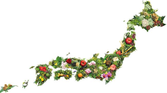 ▲Coyoriに配合する自然素材から作成した日本地図。産地に合わせて国産素材を配置しています。
