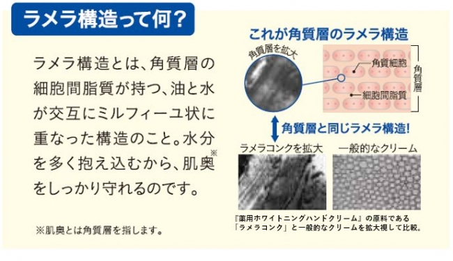 【マキアレイベル】薬用ホワイトニングハンドクリーム_ラメラ構造説明