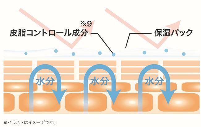 【マキアレイベル】保湿&バリア機能_肌図イメージ