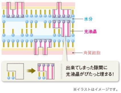 【マキアレイベル】光液晶構造_イメージ