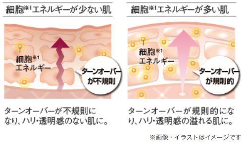 【マキアレイベル】細胞エネルギー肌図_イメージ