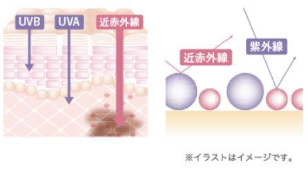 【マキアレイベル】紫外線&近赤外線肌図_イメージ