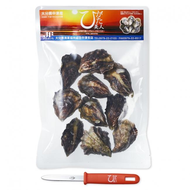 ひがた美人 冷凍 殻付き生牡蠣 10粒