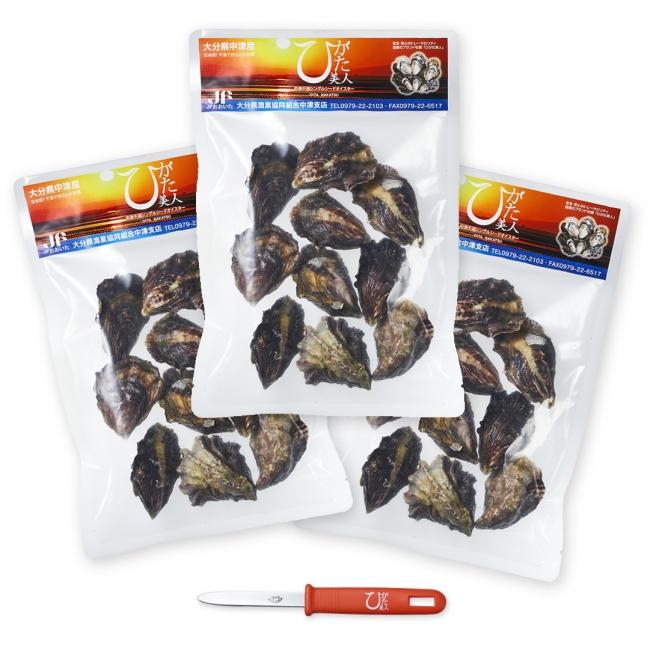 ひがた美人 冷凍 殻付き生牡蠣 30粒