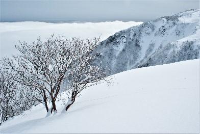 トレッキングルートからの風景(イメージ)