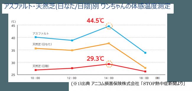 ワンちゃんの体感温度は44.5℃