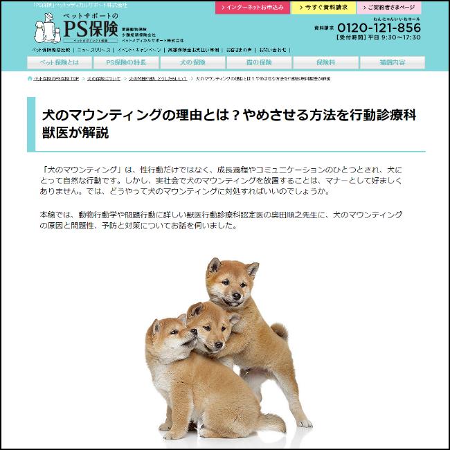 『犬の問題行動、どうしたらいい?』犬のマウンティング