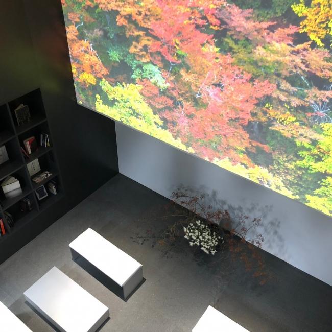 1階のライブラリ